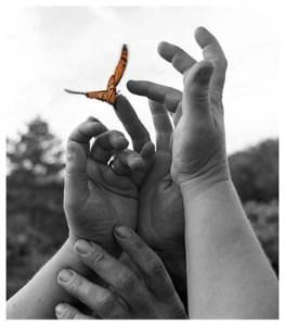 butterfly-release-21